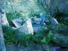 brianna-japanese-garden-rocks-2-2017_ink_li