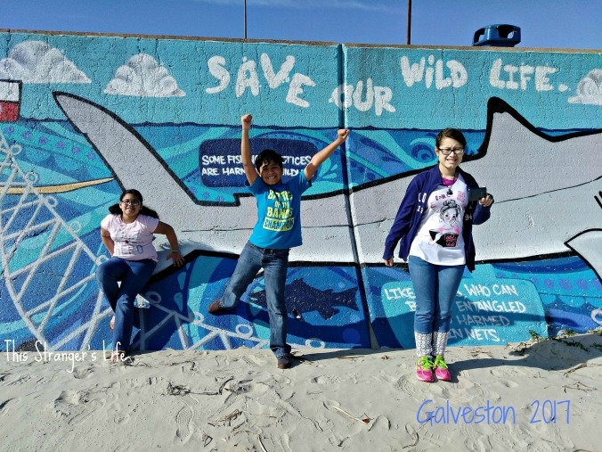 Galveston 2017 Mural Blog photo.jpg
