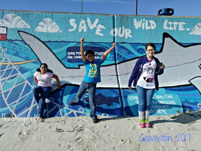 Galveston 2017 Mural Blog photo.jpg