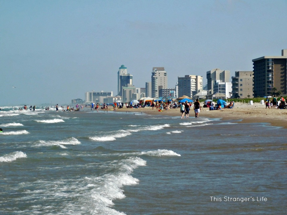 SPI Opening Pic